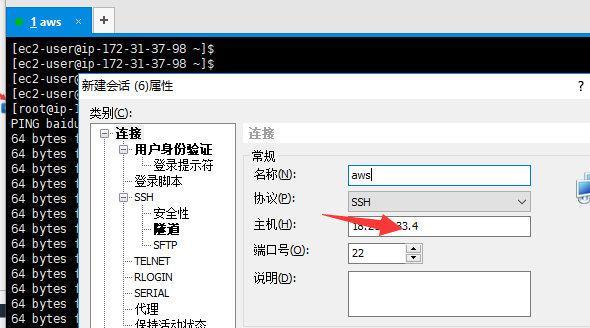 AWS 免费服务器ECS2实例,从免费薅到上手使用。
